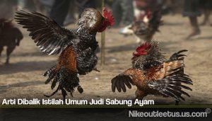 Arti Dibalik Istilah Umum Judi Sabung Ayam